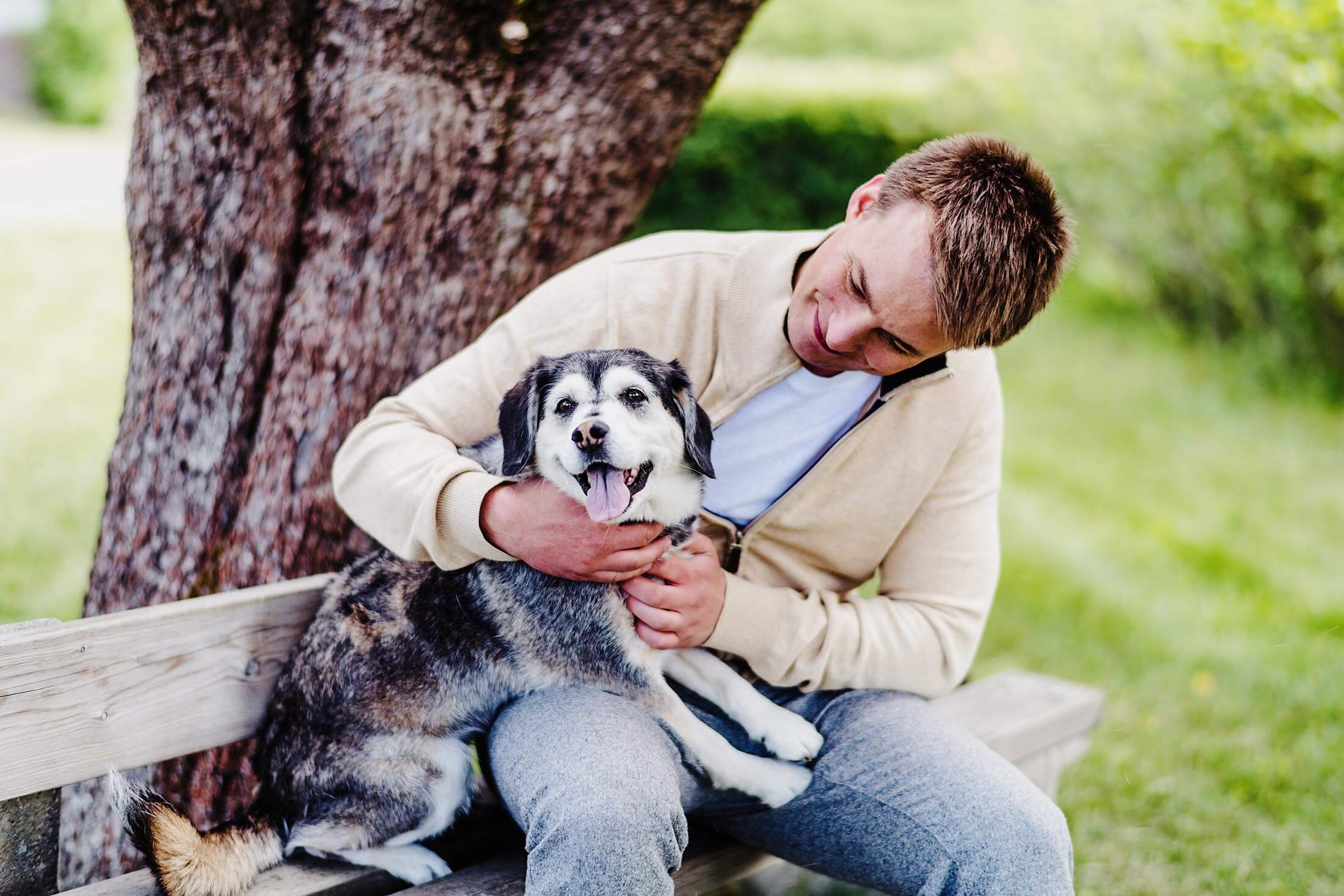 Dog Joint Supplements Article - Dog and his owner at a park